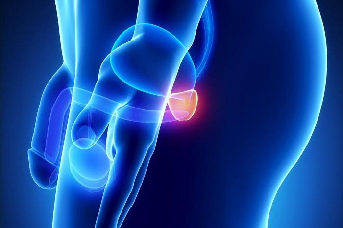 лечение рака простаты симптомы